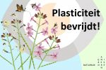 Plasticiteit bevrijdt