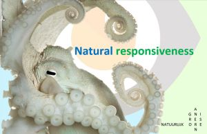 "Lezing ""Natural responsiveness"""