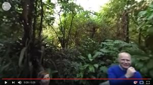 360-graden video
