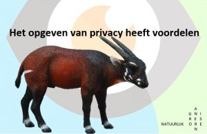 Het opgeven van privacy heeft ook voordelen